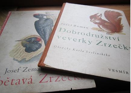 OBRÁZEK : veverka_zrzecka_a.jpg